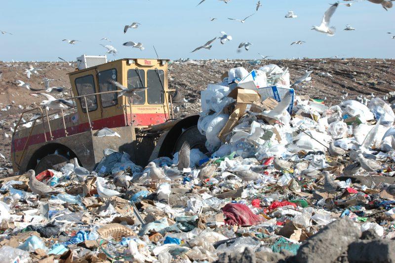 Environmental Problems: Landfills