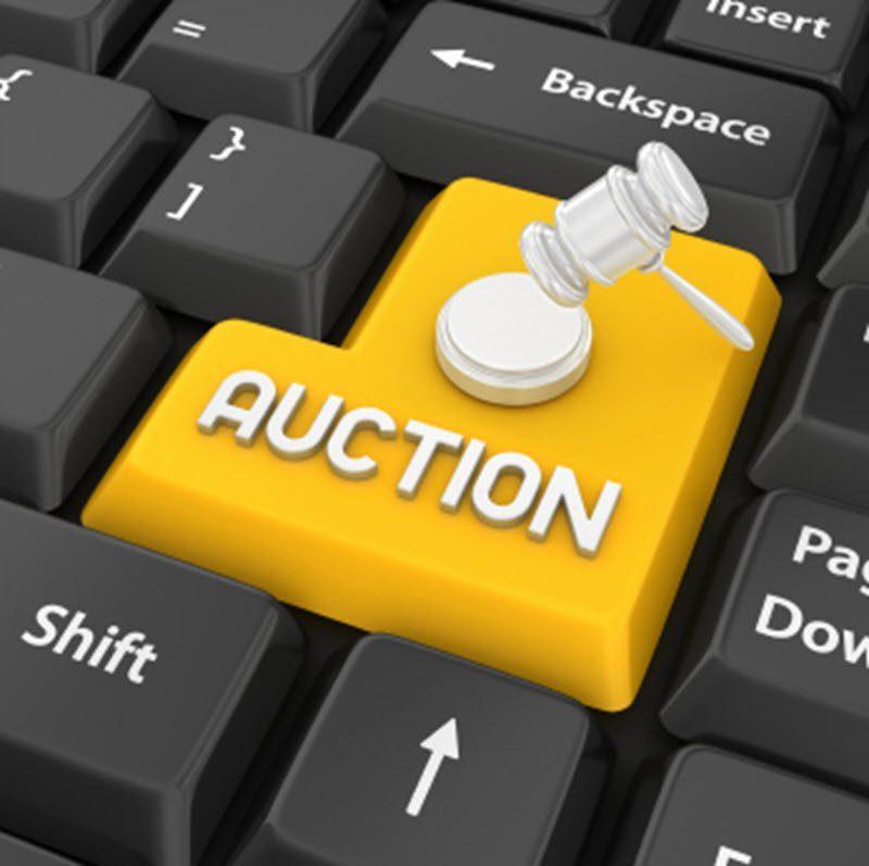 Maximize-surplus-asset-recovery-online-auctions